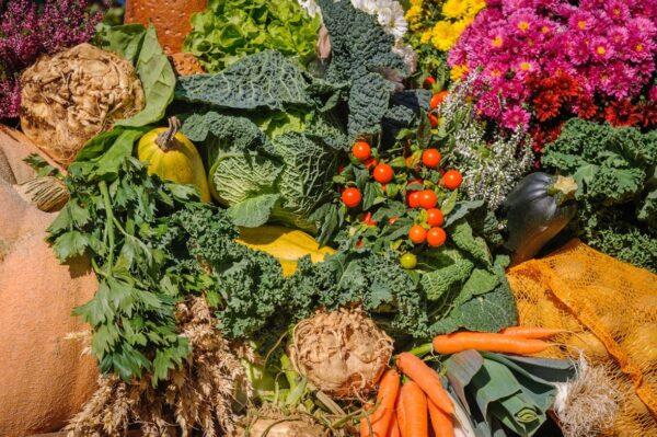 Alexander Schimmeck Vegetables